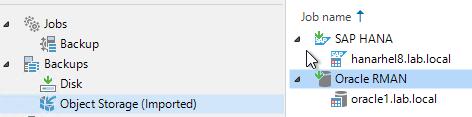 Jobs  Backup  Sac ku ps  Disk  Object Storage (Imported)  Job name t  SAP HANA  hanarhe18.Iab.IocaI  Oracle RMAN  oraclel .lab.local
